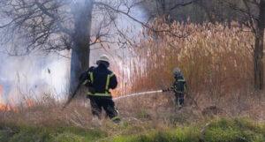 hasici-poziare